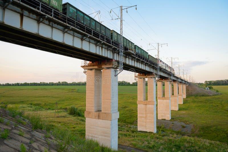 Il treno merci passa il ponte attraverso il burrone immagine stock