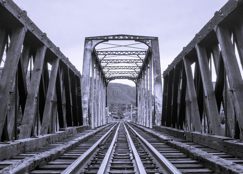 Il treno segue il ponte fotografia stock