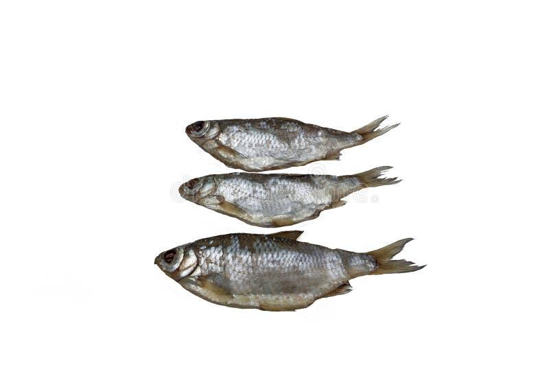 Il triotto del pesce tre si è asciugato fotografia stock libera da diritti