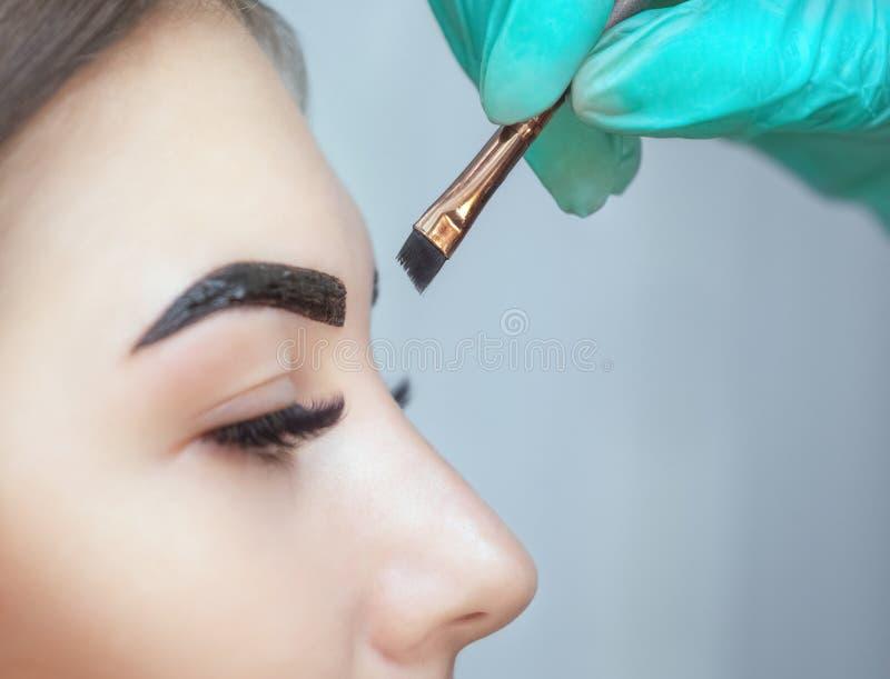 Il truccatore applica il hennè della pittura sulle sopracciglia in un salone di bellezza immagine stock