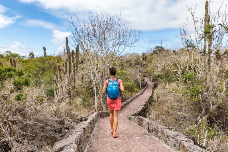Il turismo delle isole Galapagos esplora la fauna selvatica e l'avventura dell'ecoturismo fotografie stock