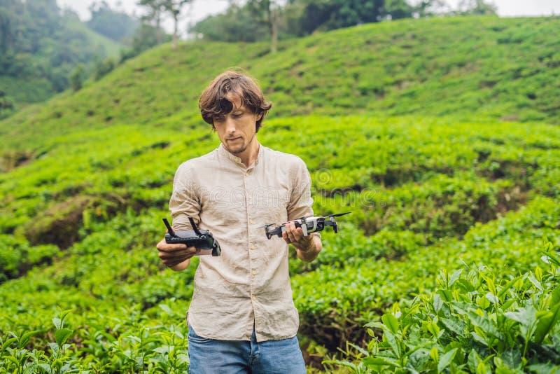 Il turista degli uomini prova a lanciare il fuco ad una piantagione di tè Natur fotografia stock libera da diritti