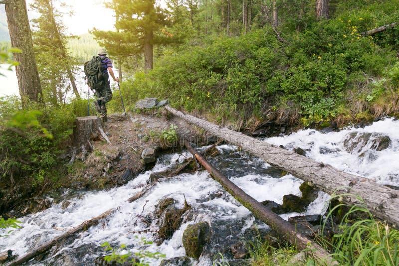 Il turista ha attraversato il ceppo attraverso il fiume immagine stock