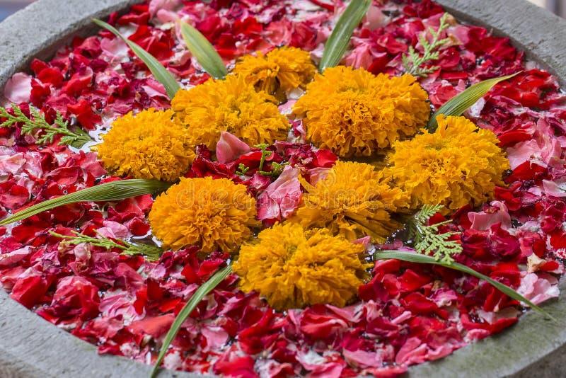 Il vaso è riempito di acqua ed è decorato con le foglie rosse ed i bei fiori arancio in giardino tropicale Bali, Indonesia fotografie stock libere da diritti