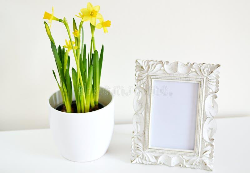 Il vaso bianco con i narcisi e la foto incorniciano il bianco d'annata di stile immagini stock
