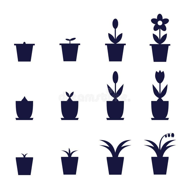 Il vaso fiorisce la crescita royalty illustrazione gratis