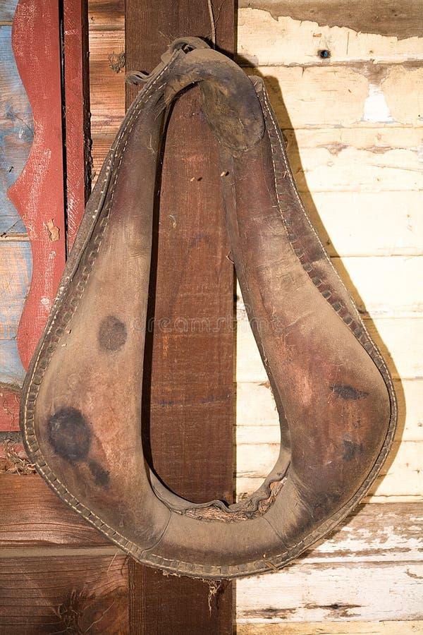 Il vecchio cablaggio del cavallo fotografia stock