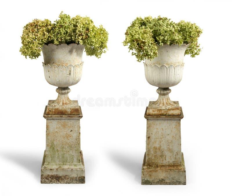 Il vecchio ghisa antico ha dipinto le urne del giardino sui plinti isolati sopra fotografia stock libera da diritti