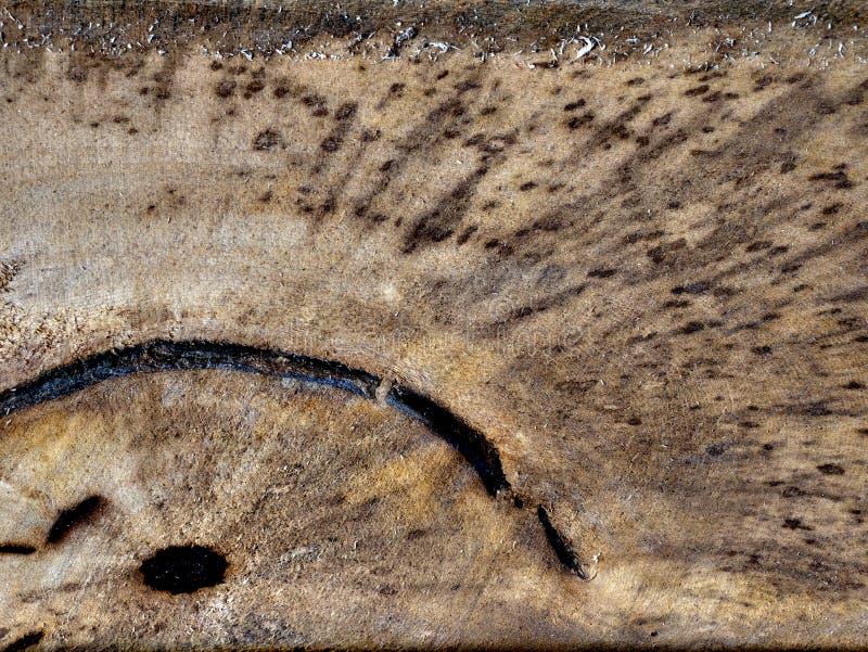 Il vecchio granulo di legno fende la struttura immagini stock libere da diritti