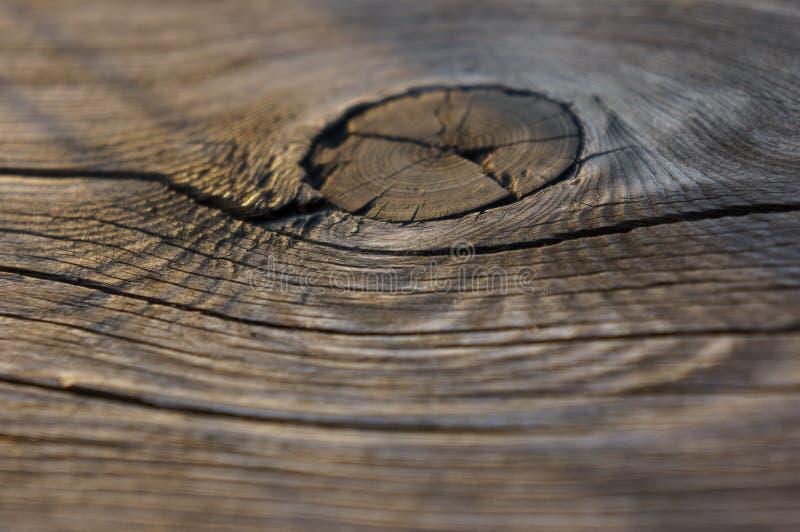 Il vecchio legno grezzo annodato incrinato marcio stagionato vignetted la struttura di lerciume fotografie stock libere da diritti