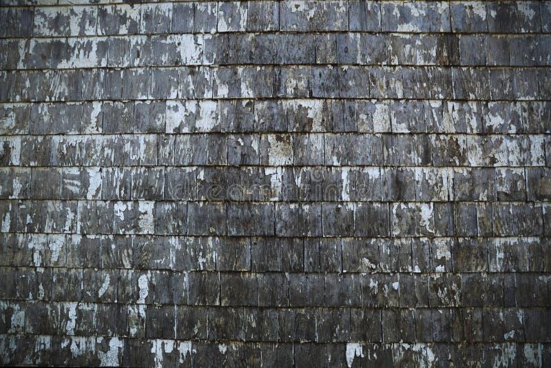 Il vecchio legno ha sparso il raccordo con la pelatura della struttura bianca del fondo della pittura immagine stock libera da diritti