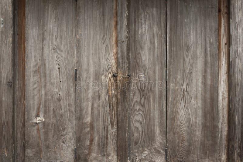 Il vecchio pino ha lucidato la superficie, la struttura ed il fondo di legno della parete fotografie stock libere da diritti