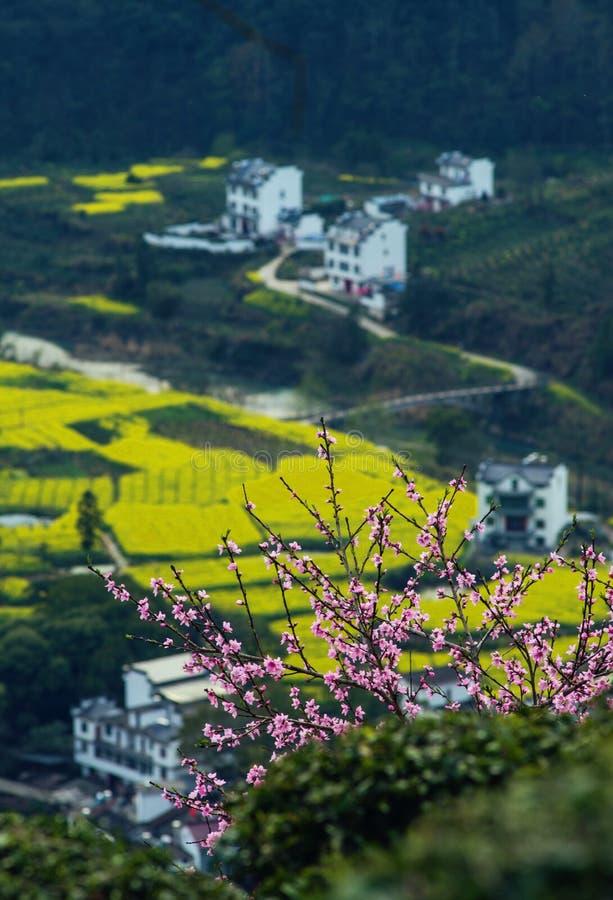 Il vecchio villaggio antico cinese della valle trascura in montagna con il fiore, nell'Anhui, huizhou, Cina immagine stock libera da diritti