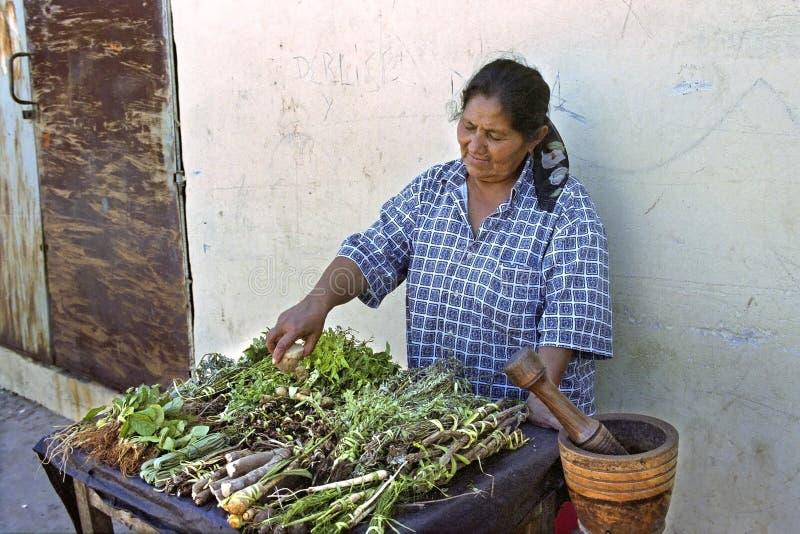 Il venditore ambulante femminile paraguaiano vende le spezie fotografia stock libera da diritti