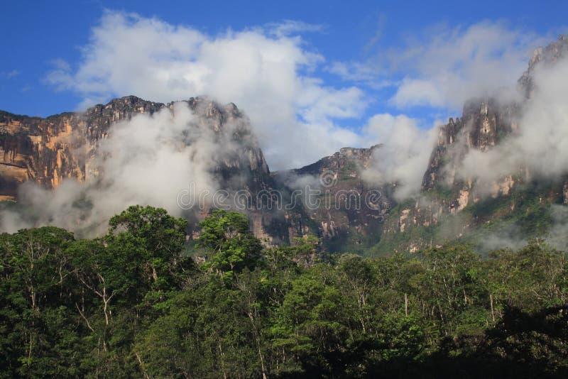 Il Venezuela Angel Falls Canyon immagini stock libere da diritti