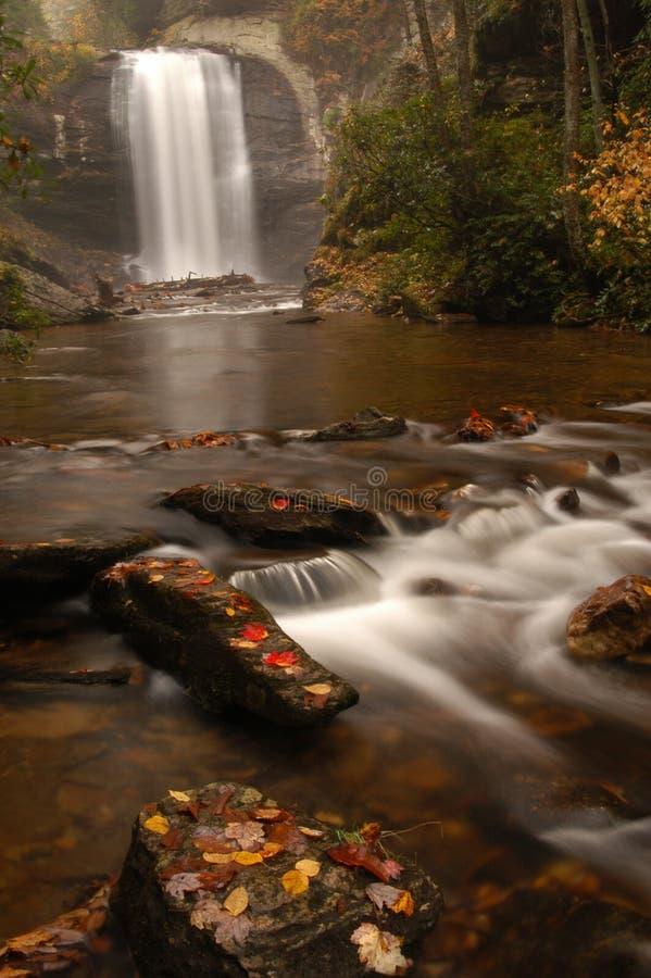 Il vetro di sguardo cade in autunno fotografie stock