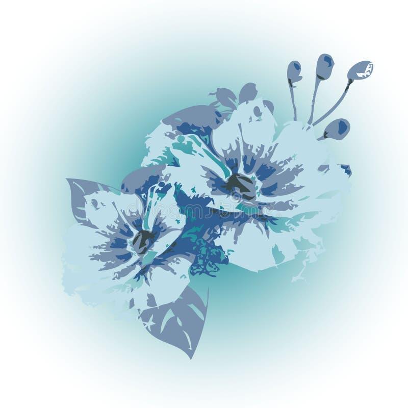 Il vettore blu-chiaro dell'eleganza fiorisce l'illustrazione Sedere floreali bianche illustrazione di stock