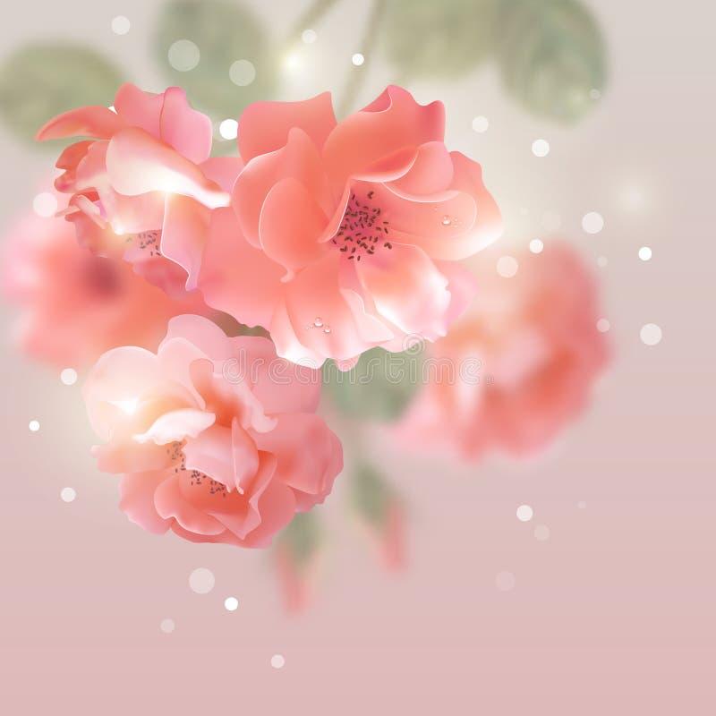 Il vettore brillante fiorisce le rose illustrazione di stock