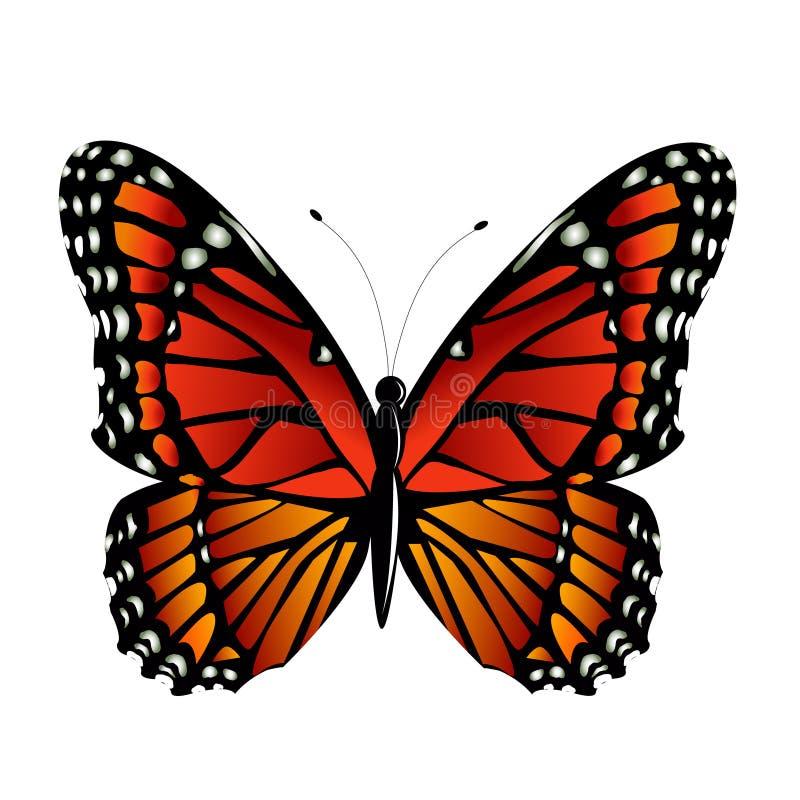 Il vettore della farfalla di monarca illustrazione di stock