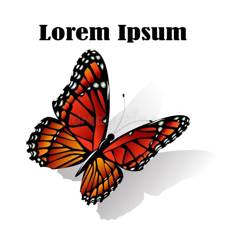 Il vettore della farfalla di monarca illustrazione vettoriale