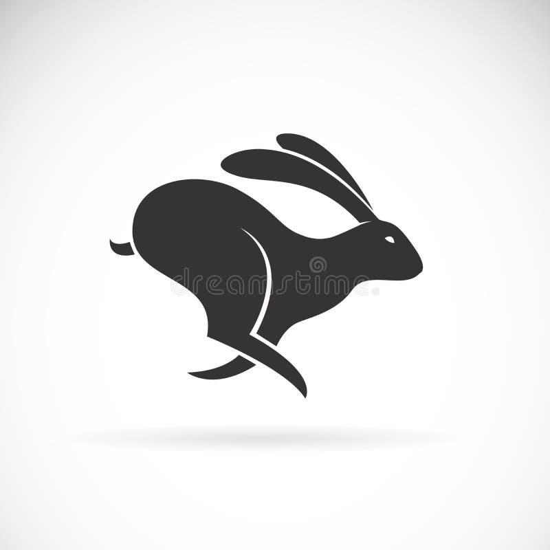 Il vettore di coniglio nero sta correndo sul fondo bianco animale illustrazione vettoriale