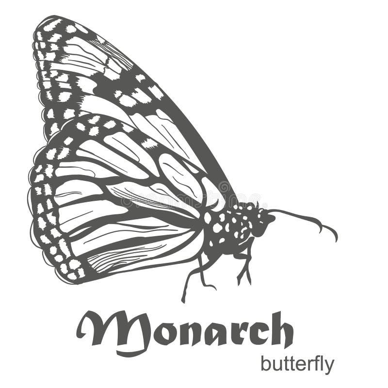 Il vettore di danaus plexippus della farfalla di monarca illustrazione di stock
