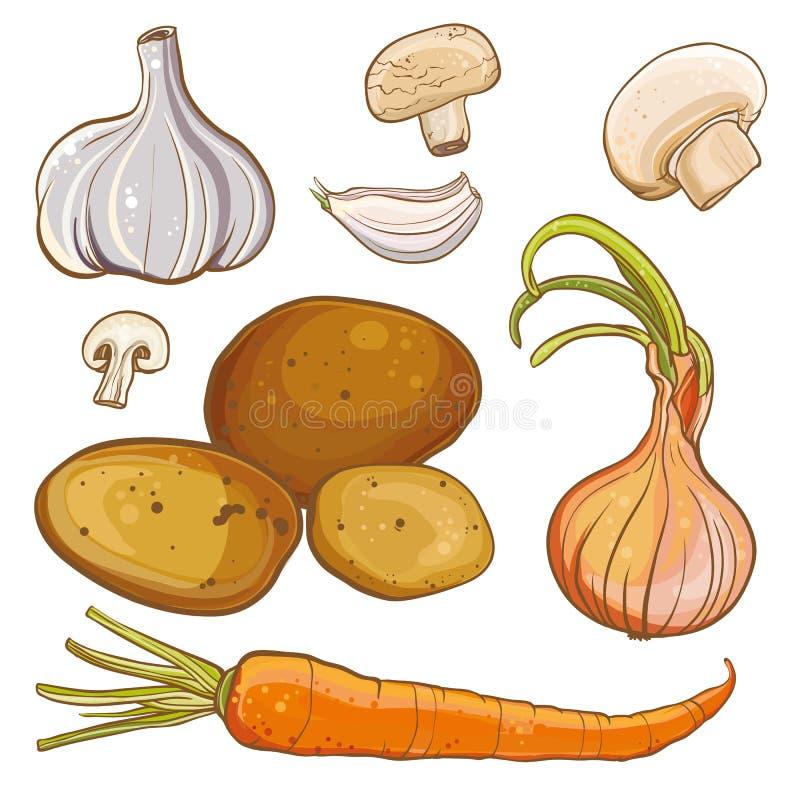 Il vettore ha messo con la cipolla, carota, patate, aglio, funghi illustrazione vettoriale