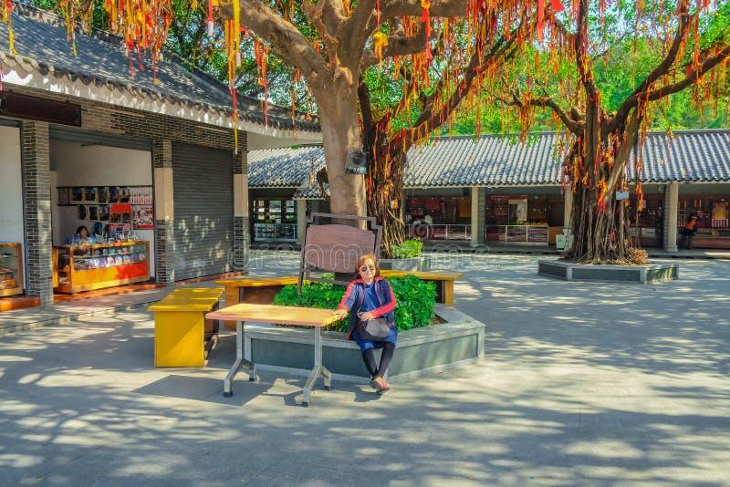 Il viaggiatore asiatico senior delle donne si siede sotto l'albero di culto nella città di Foshan della montagna di Xiqiao fotografie stock