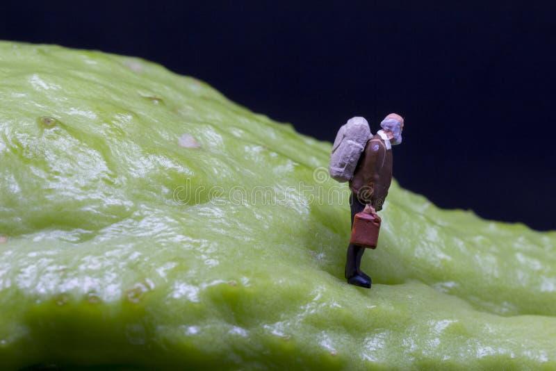 Il viaggiatore dipende la frutta tropicale Figurina senior del viaggiatore sulla verdura esotica ruvida immagini stock