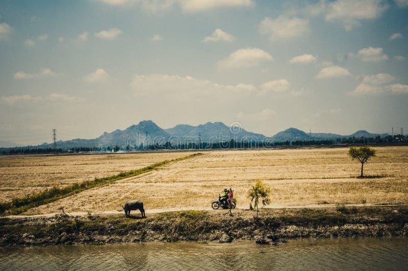 Il Vietnam fotografia stock