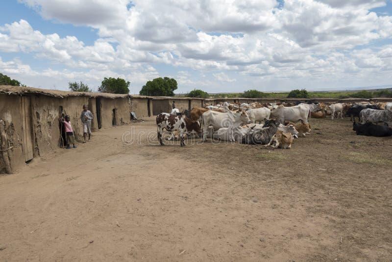 Il villaggio tradizionale di Maasai con le loro azione in tensione ha tenuto nel cen immagini stock libere da diritti