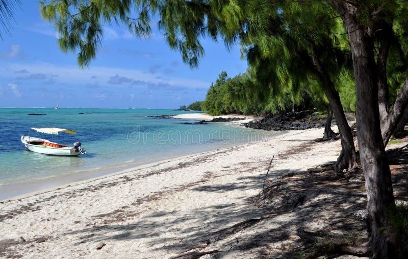 Ile aux cerfs, ocean indyjski wyspa obrazy stock