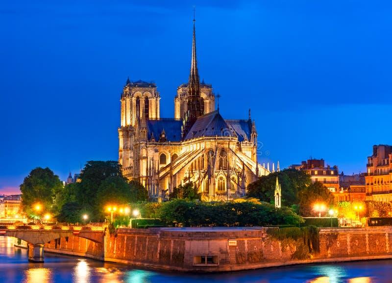 Ile de la Cite, Paris, Frankreich: Nachtansicht von Cathedrale Notre DA lizenzfreie stockfotos