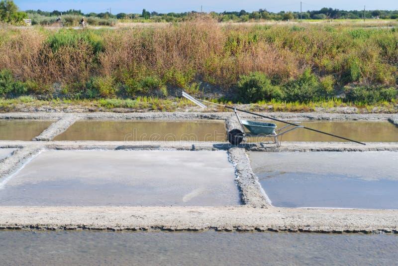 Ile de RA©盐湖和工具为收获 库存图片