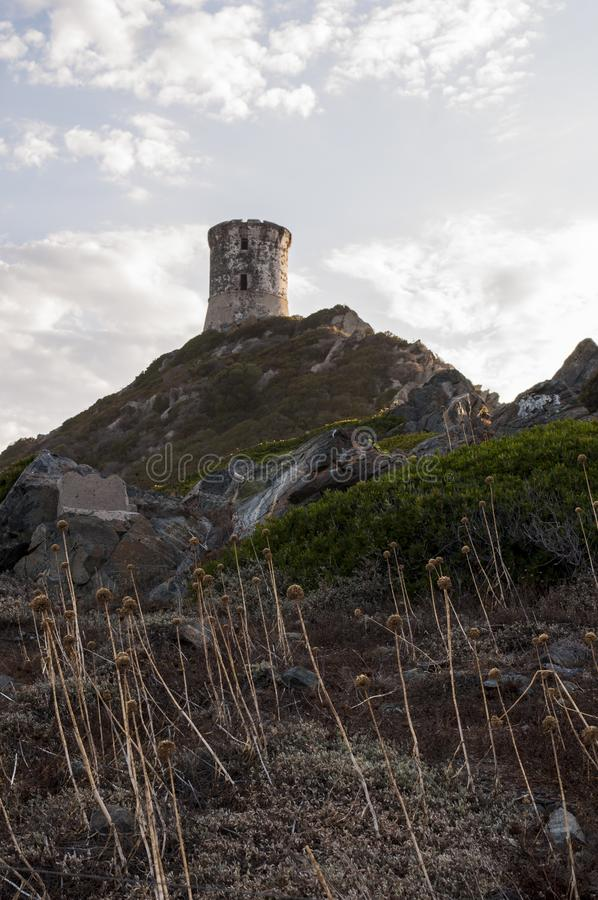 Iles Sanguinaires, Gulf of Ajaccio, Corsica, Corse, France, Europe, island. Corsica, 01/09/2017: sunset on La Parata Tower, a ruined Genoese tower built in 1608 stock photos