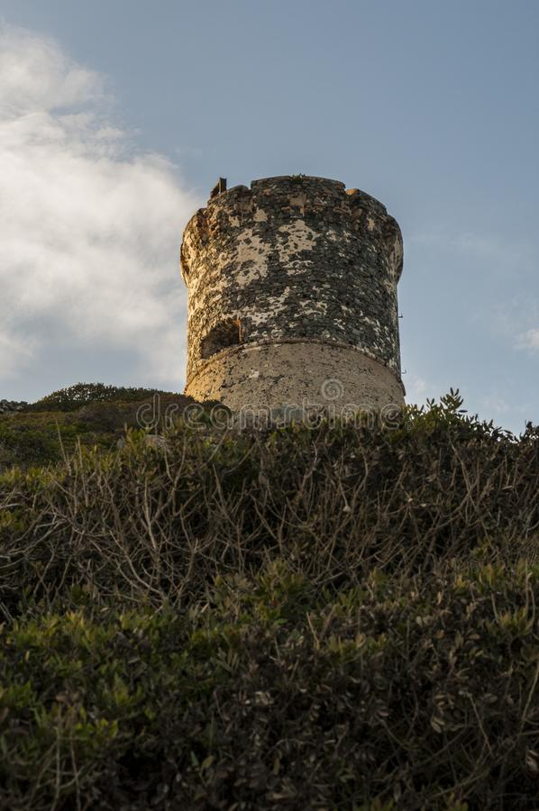 Iles Sanguinaires, Gulf of Ajaccio, Corsica, Corse, France, Europe, island. Corsica, 01/09/2017: sunset on La Parata Tower, a ruined Genoese tower built in 1608 royalty free stock images