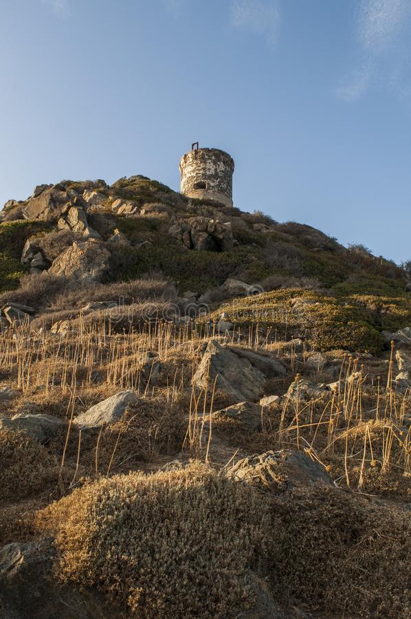 Iles Sanguinaires, Gulf of Ajaccio, Corsica, Corse, France, Europe, island. Corsica, 01/09/2017: sunset on La Parata Tower, a ruined Genoese tower built in 1608 royalty free stock photo