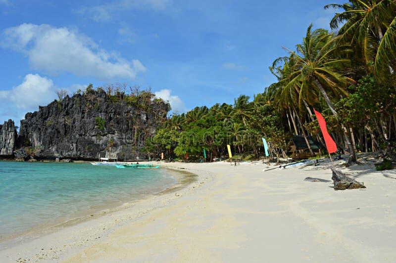 Ilha bonita, baía azul e palmeiras no EL Nido, Palawan, Filipinas fotos de stock