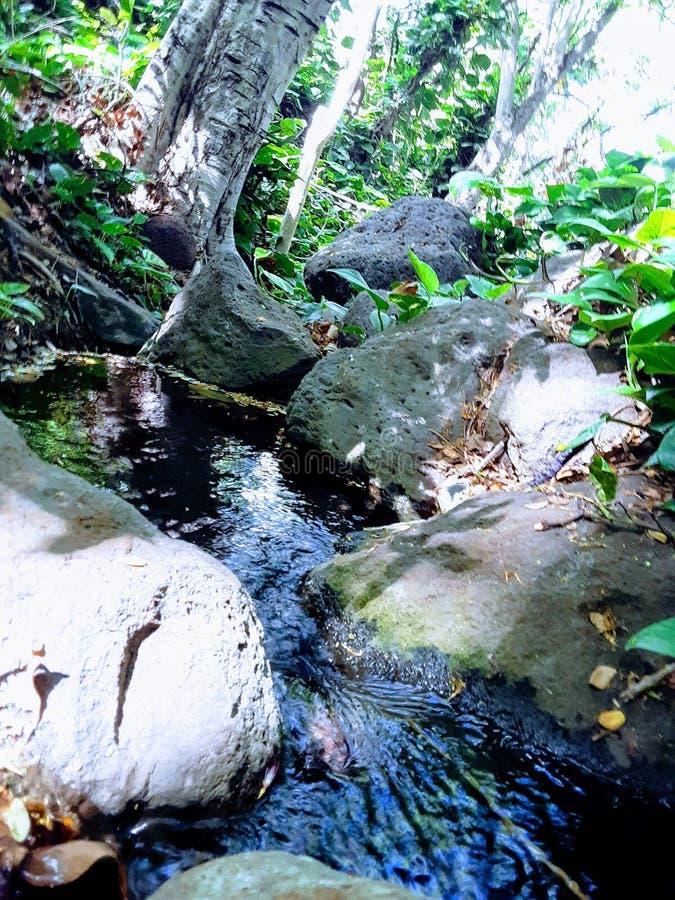 Ilha bonita de oahu fotografia de stock
