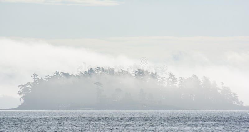 Ilha coberta na névoa no noroeste pacífico imagem de stock
