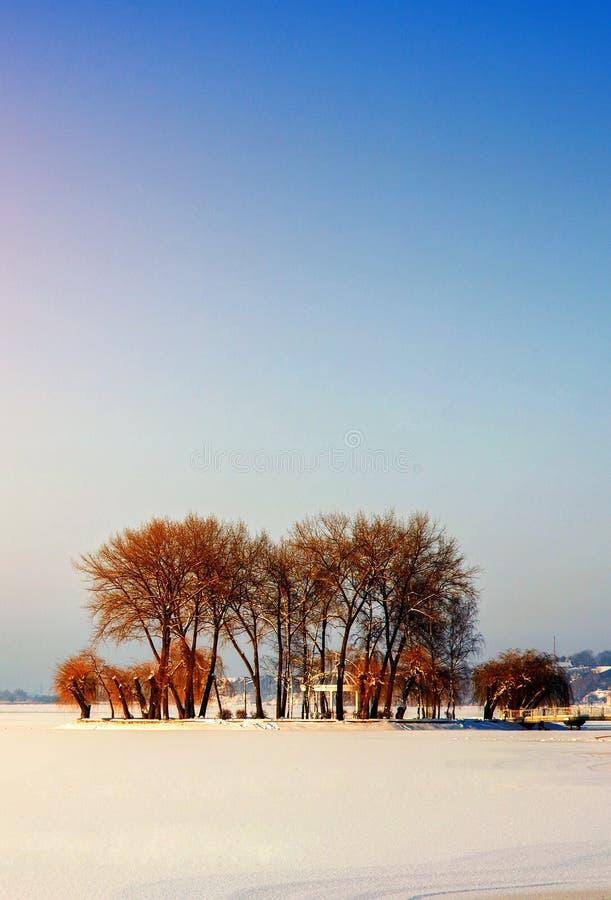 Ilha com árvores no meio de um lago congelado foto de stock