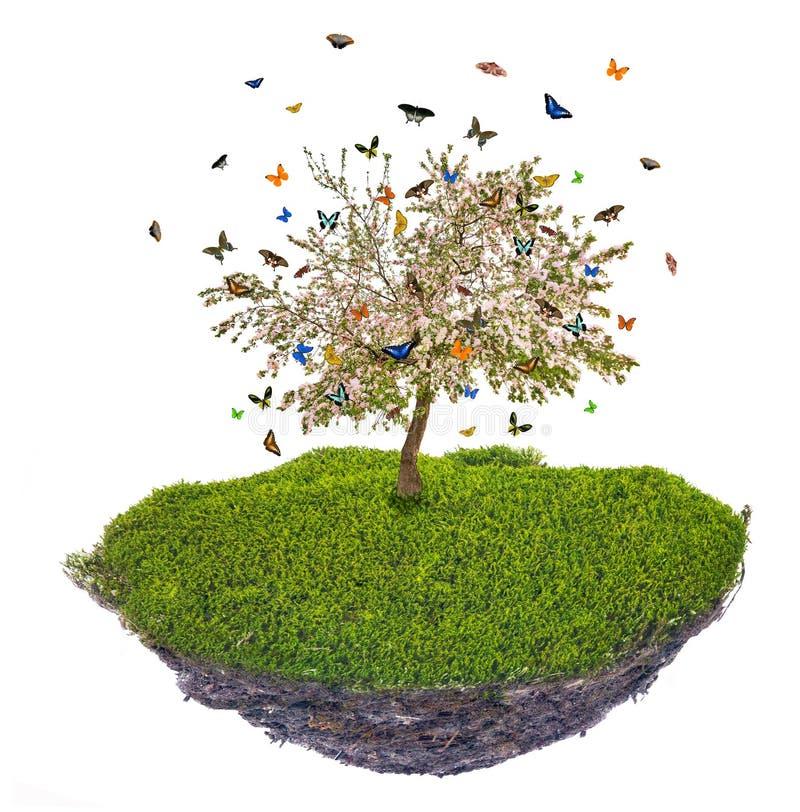 Ilha com butterfies acima da árvore de maçã da grama verde e da mola ilustração stock