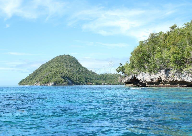 Download Ilha Com Rocha Da Pedra Calcária Imagem de Stock - Imagem de isle, plantas: 65577551