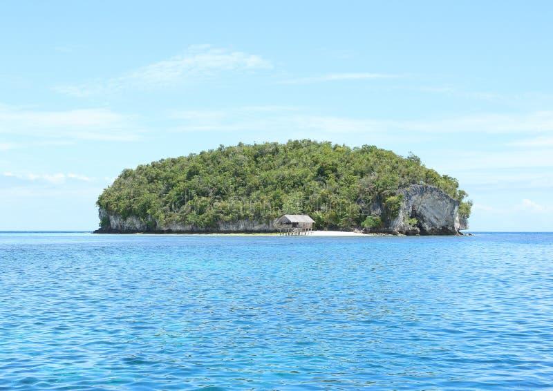 Download Ilha Com Rocha Da Pedra Calcária Foto de Stock - Imagem de casa, overgrown: 65577596