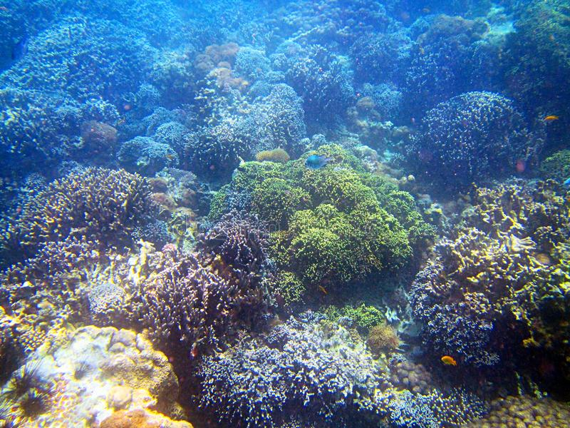 Ilha de Bawe fotografia de stock
