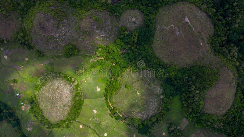 Ilha de Bohol dos montes do chocolate da vista aérea, formação geological dos montes do chocolate na província de Bohol das Filip fotos de stock