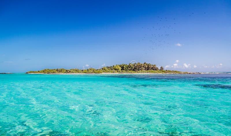 Ilha de Contoy no mar das caraíbas mexicano fotografia de stock