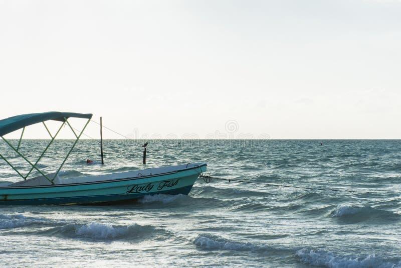 Ilha de Holbox imagens de stock royalty free