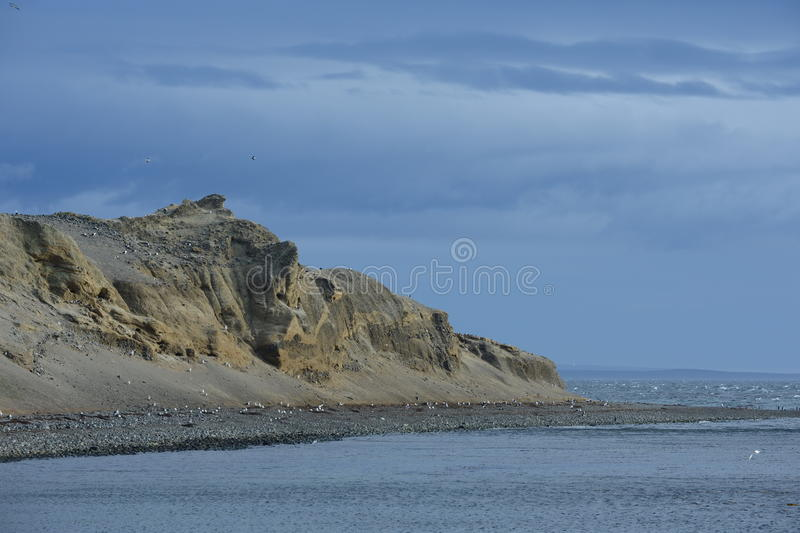 Ilha de Magdalena no passo de Magellan imagens de stock