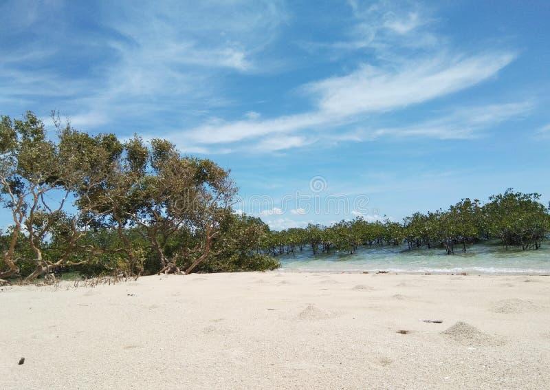 A ilha de Pandaw é ni encontrado Buena Vista Bohol Filipinas Uma da ilha a mais visitada no bohol para fazer a família de ligamen imagens de stock